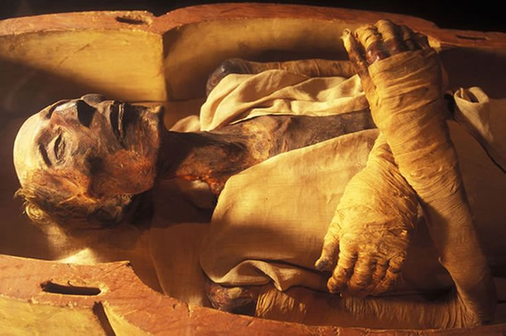 The Dead Body Of Firon:  Here's the story of France about the dead body of firon..........Read more  http://www.webjazba.com/?p=8172