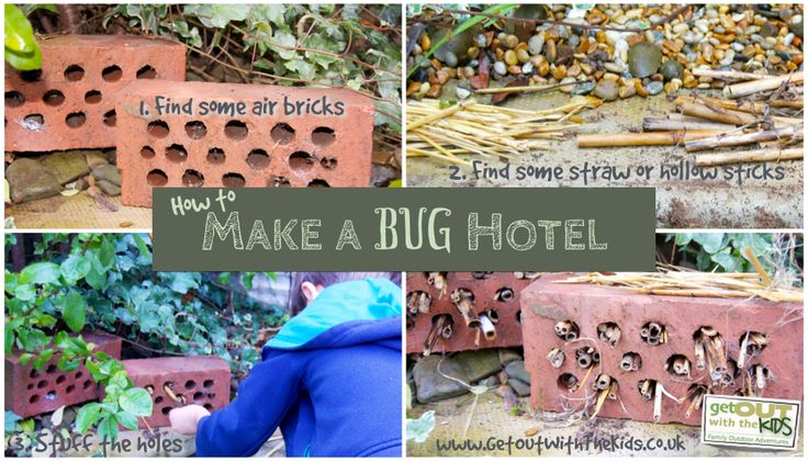 Making a bug hotel is a great Autumn project for you and your kids in the garden. It's good for the environment and your garden too. See this guide.