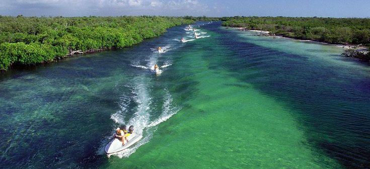 La laguna Nichupté es un Área de Protección de Flora y Fauna, donde viven aves, cocodrilos y algunos mamíferos.
