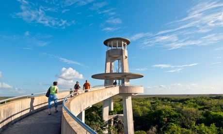 Top 10 activities in the Florida Everglades