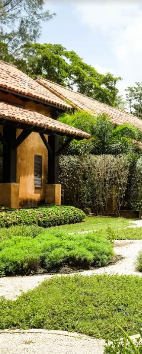 At Spa Botánico, every bit of green in the garden serves a purpose. Flourishing herbs like Aloe and Mexican Mint each give a fresh, fragrant touch to the day's treatments.