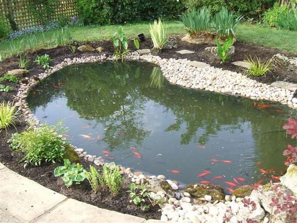 garden pond ideas | 684cb Fish pond Home Landscaping Design Ideas