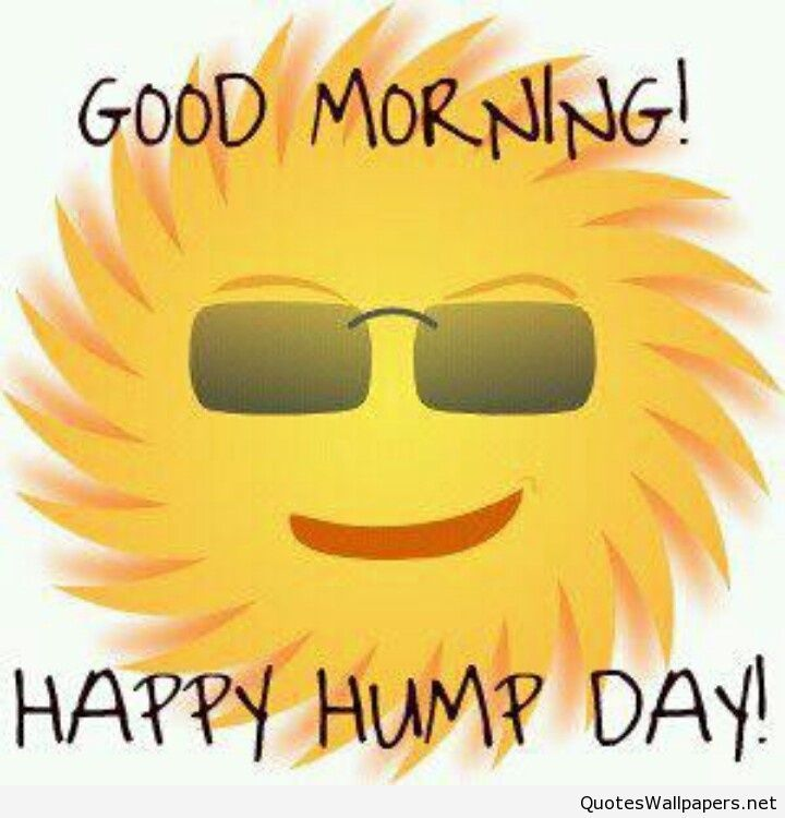Cute Good Morning & Happy Hump Day saying