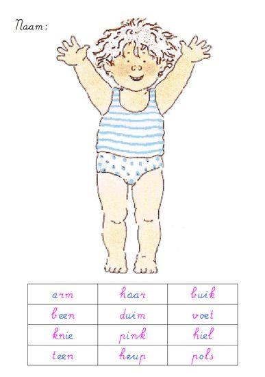Knipblad lichaam - MontessoriNet