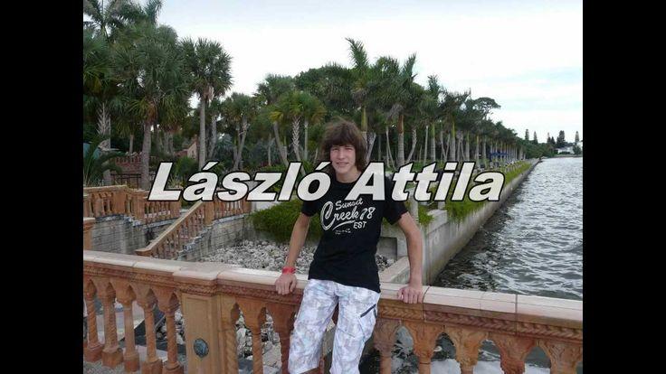 Elvis Presley (László Attila) Falling in love with you..