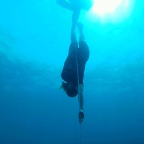 First ever free diving course! 10m/30feet on one breath ���� #freedive #freediveair #giliair #proud #blue #travel #newexperience #wanderlust #backpack #dive #travelling #bali #indonesia http://www.unirazzi.com/backpack/post/1469487190773628050_329144393/?
