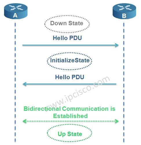 IS-IS Adjacency States, IS-IS Neighbourship Establishment #ccna #ccnp #ospf #networkengineer