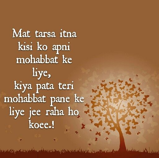 1251 Best Images About Shayari On Pinterest: The 293 Best Images About Shayari On Pinterest