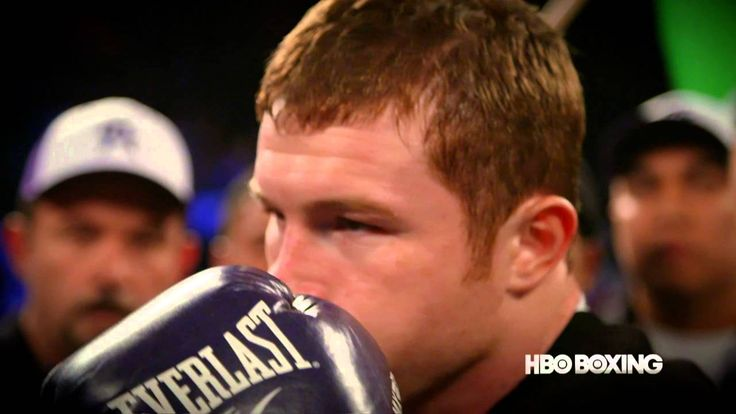 Hey Harold!: 2015 Trainer of the Year - HBO Boxing Videos