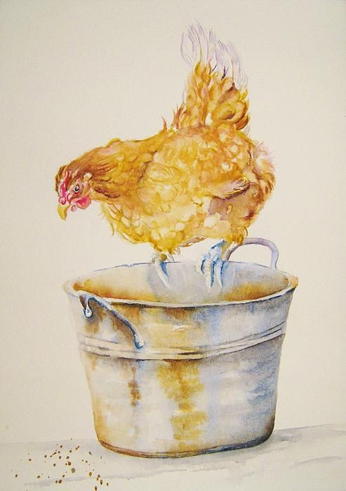Chicken Feed. Fine Art America. Ebay: greypepper71. https://www.facebook.com/GreyPepperArt