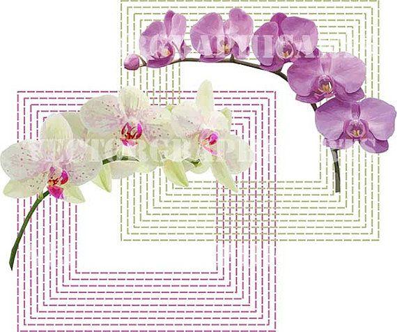 Orchids. Digital Clipart. Graphic Design. от VectorGraphicArts