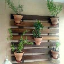 Vasos na parede