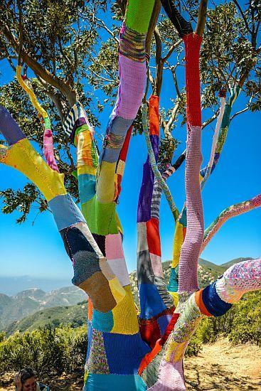 Yarn Bombing - Santa Barbara, California