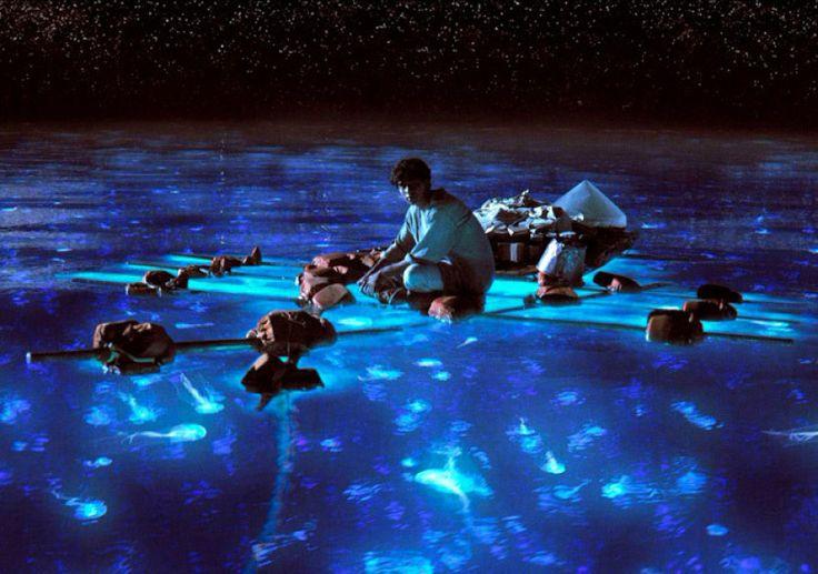 [Cinema] O filme as aventuras de PI entre outras nomeações, recebeu o Oscar por melhores efeitos especiais. Com o filme se pode perceber como a era tecnológica vêm se transformando ao longo dos anos e ficando cada vez mais brilhantes e surreais.