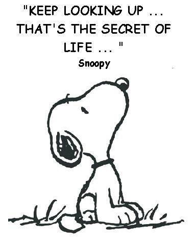 Keep Looking Up... #quote Snoopy