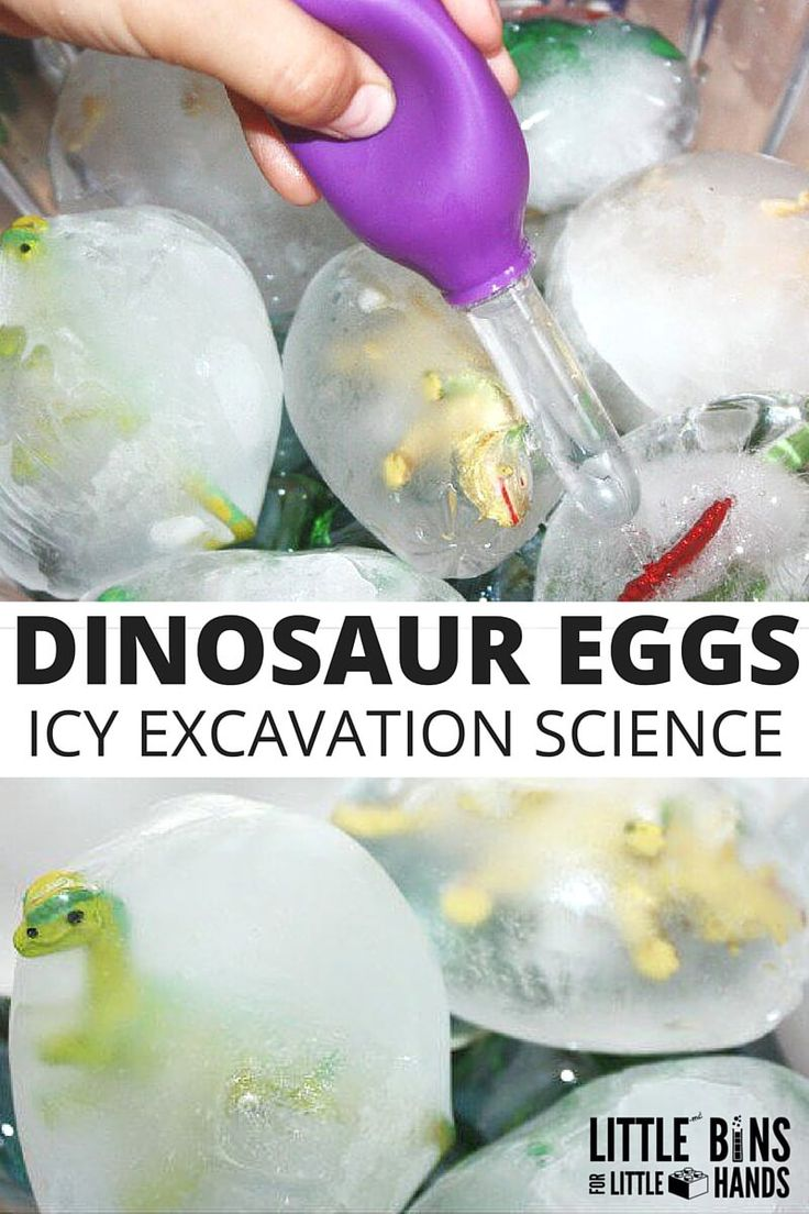 Frozen dinosaur eggs ice science excavation activity for kids! Preschool science with a fun dinosaur activity using plastic dinosaurs and balloons. Engage kids with hands on water science activities that are playful.