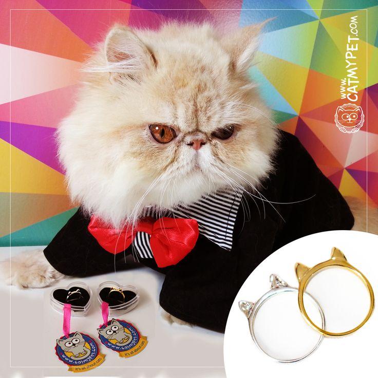 Para você que tem um gatinho ou uma gatinha especial e quer mostrar todo seu amor.  Nossas alianças são banhadas a ouro ou prata e você pode escolher o tamanho e a cor perfeita! Delicada, e um charme só!  http://www.catmypet.com/orelha-de-gato