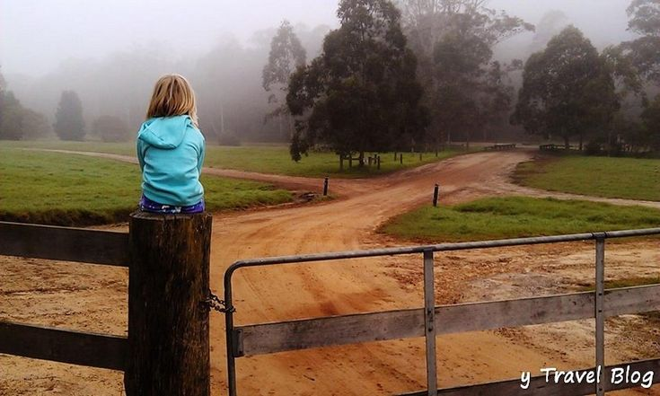 Things to Do on the Central Coast NSW - The Fun Starts Here!
