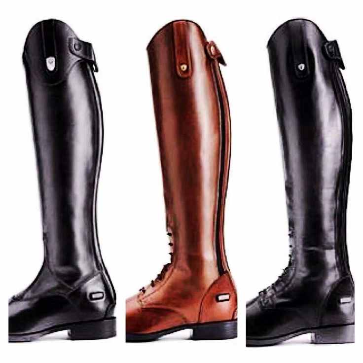Horse Riding Boots Ariat - Boot Hto