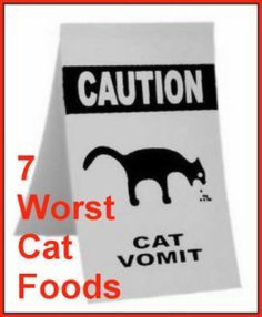 The 7 Worst Foods You Can Feed Your Cat | food | Cats, Bad