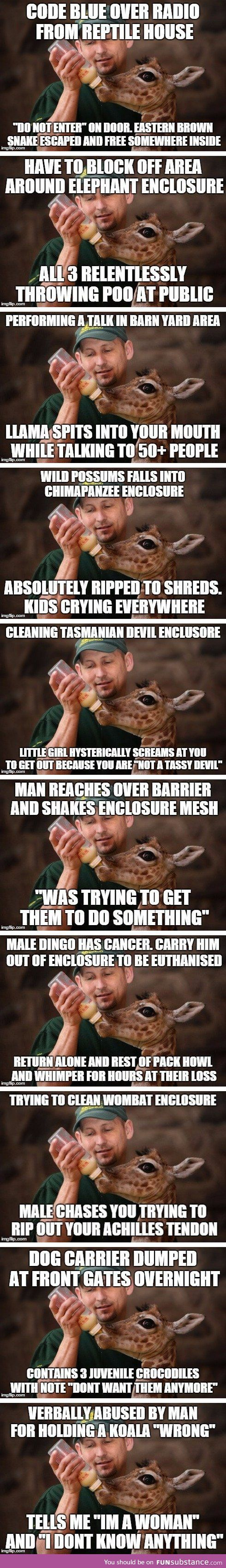 Best Future Zoo Keeper Images On Pinterest Zoo Keeper Dream - 20 hilarious photos of what zookeepers get up to after closing hours