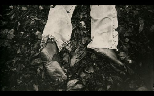 What Remains : The Life and Work of Sally Mann | Projector ...