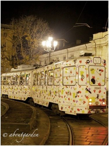 tram Torino Pomonte
