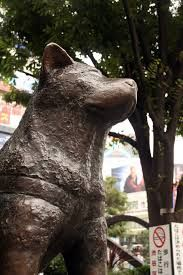 hachiko a dog's story cast - Google Search