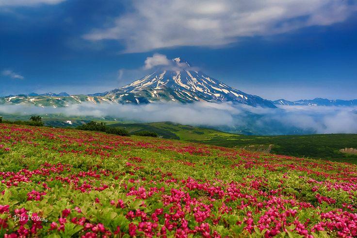 Amazing Kamchatka!