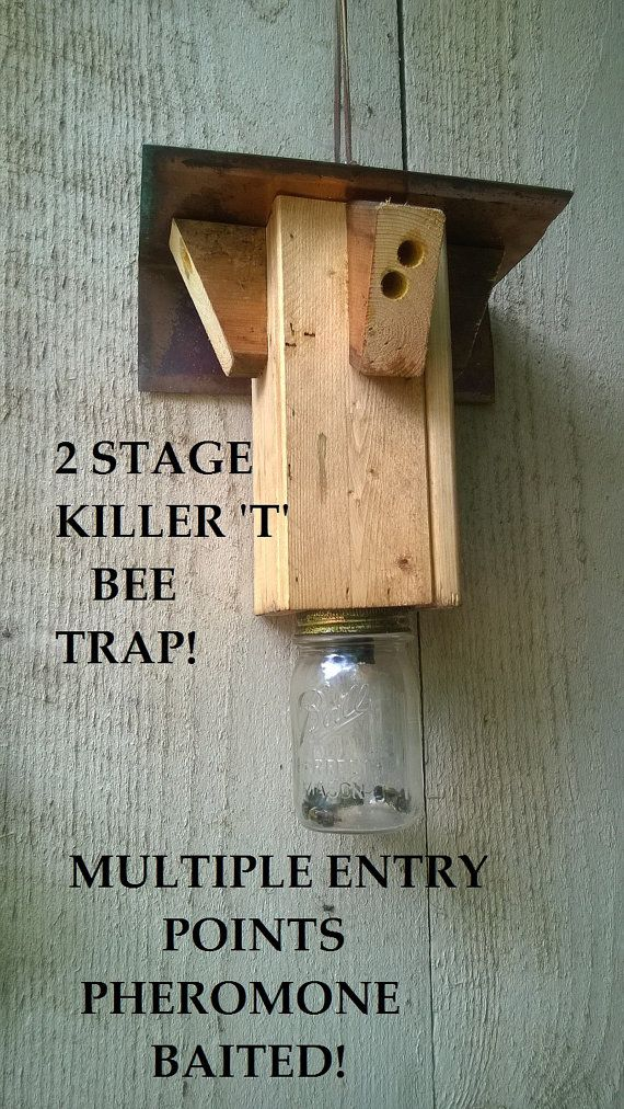 Awesome Bee Trap for Carpenter Bees Coosa us Killer T by CoosaRiverCrafters