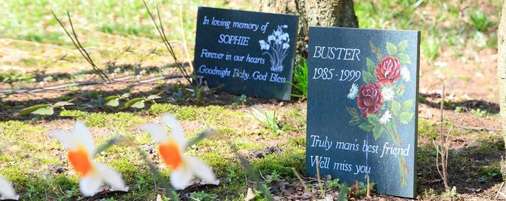 Dignity Pet Crematorium is a specialist Individual Pet Cremation Service. We have a wide variety of pet caskets, urns, memorials, keepsakes and tributes.