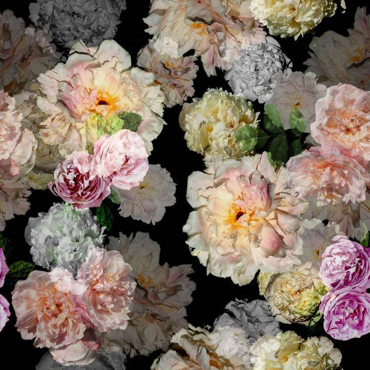Bomuldsjersey - smukke smukke blomster på mørk bund