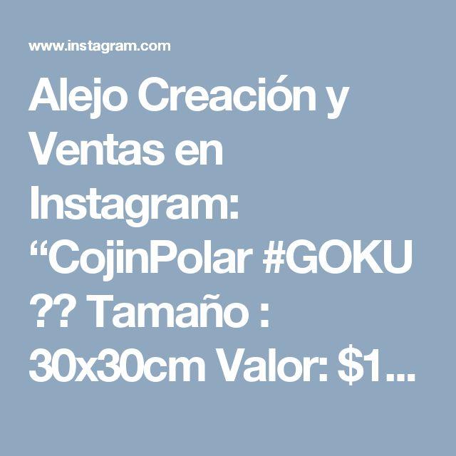 """Alejo Creación y Ventas en Instagram: """"CojinPolar #GOKU 😊😁 Tamaño : 30x30cm Valor: $12,00 . #goku #dragonball #cojinesfieltro #almohadas #dragonballz"""""""