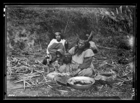 A woman uses a patu muka (flax-fibre beater) to prepare fibre for weaving, 1921 by James McDonald. Te Papa