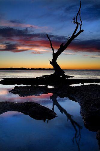 Stunning: Fantastic Photo, Natural Photography, Reflection Photography, Sunsets, Photography 42, Landscape Photography, Beaches Photography Tips, Amazing Reflection, Beautiful Reflection