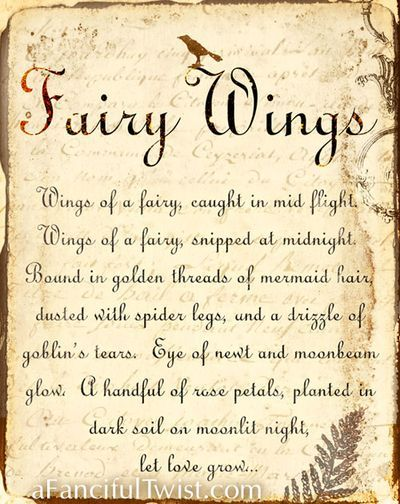 Fairy Wings -take a look a Vanessa Valencia, afancifultwist.com amazing work