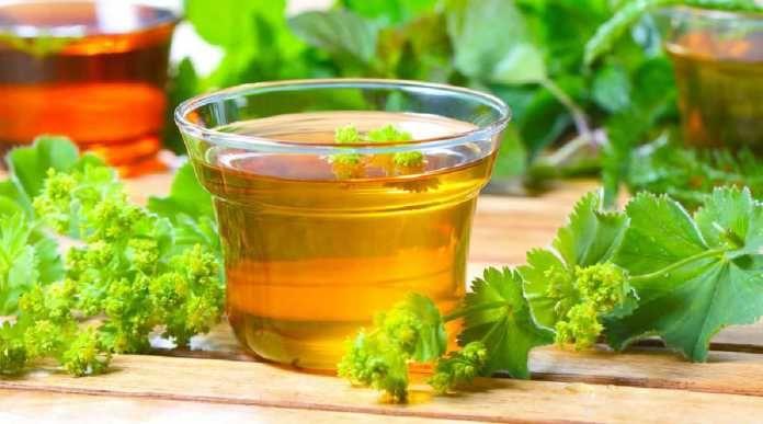 Kontryhel - léčivá bylinka žen + 5 domácích receptů