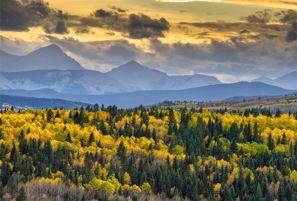 Calgary: The Destination for All Seasons