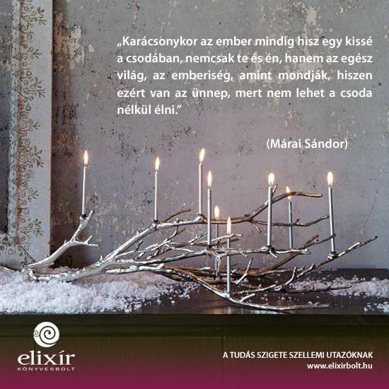 Márai Sándor idézet a csodákról. A kép forrása: Elixír Könyvesbolt