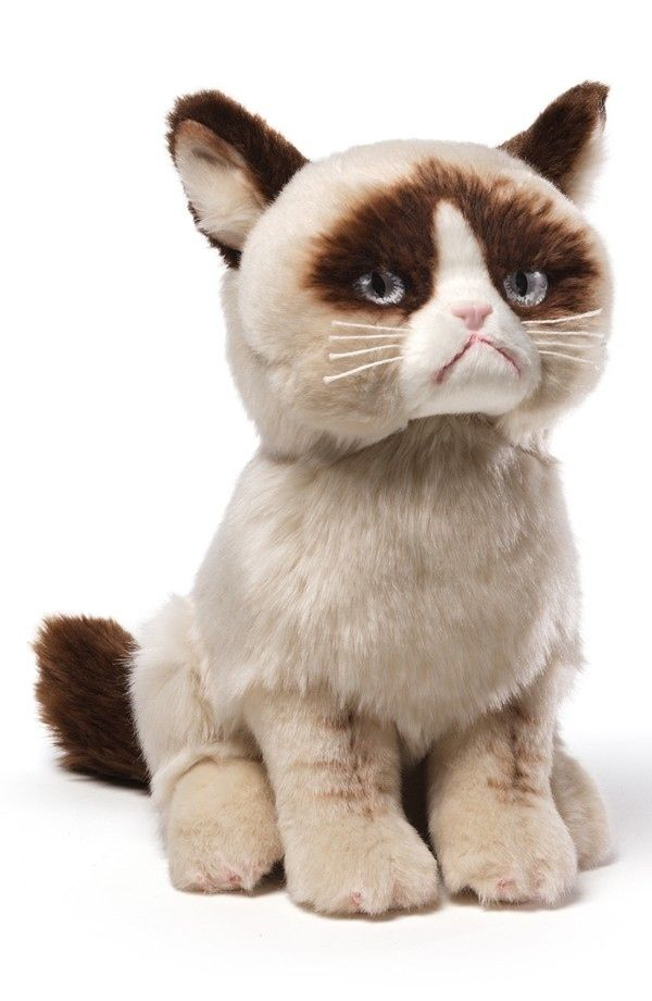 Grumpy Cat Stuffed Animal, $22 | 25 Adorable Gifts For Your Valentine For Under $25