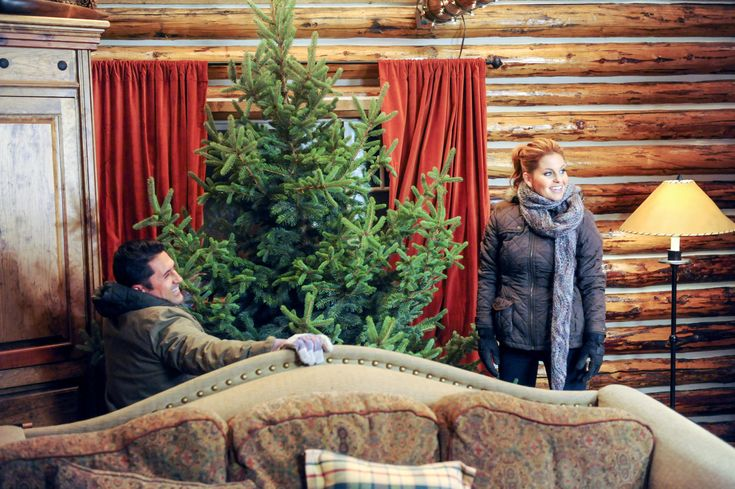 Christmas under wraps hallmark christmas movies pinterest