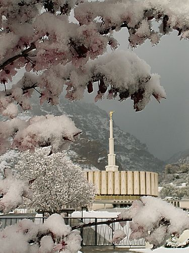 The Provo Temple during a spring snow