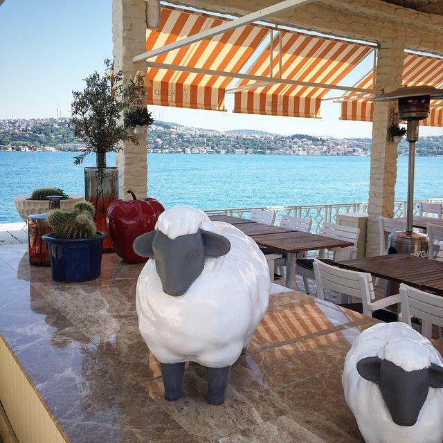Suda Kebap Restaurant , Suada Istanbul Turkey #interior #design by Gsc Design | Interiors | Atelier