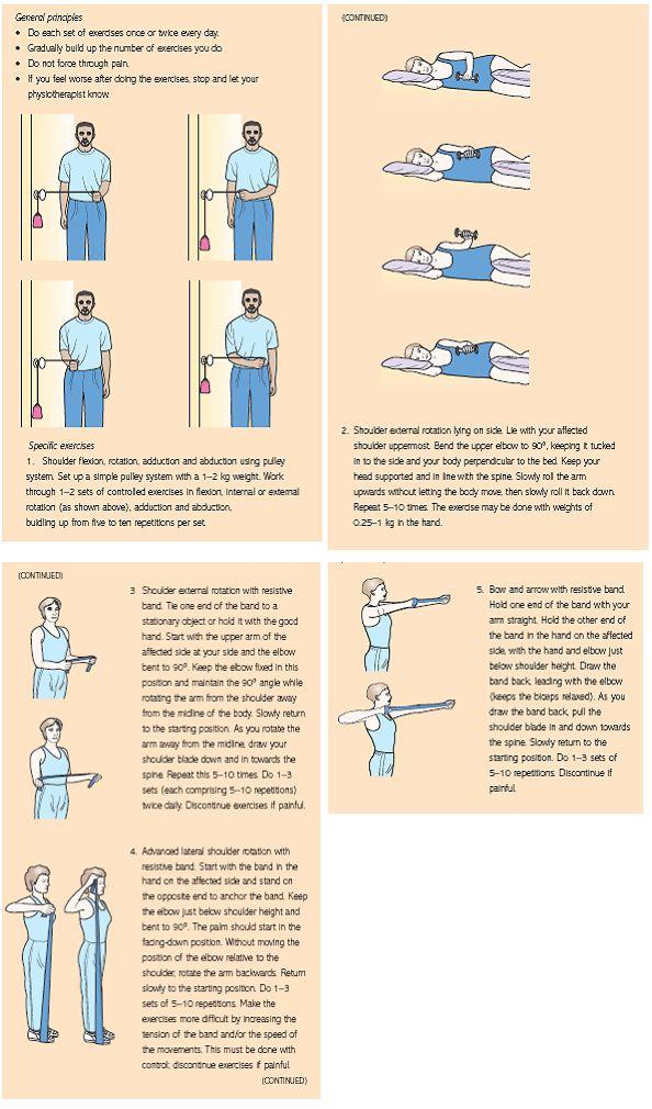 rotator cuff tear exercise pdf