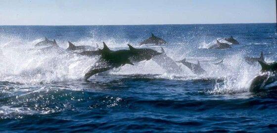 Port St John's - Wild Coast, Eastern Cape
