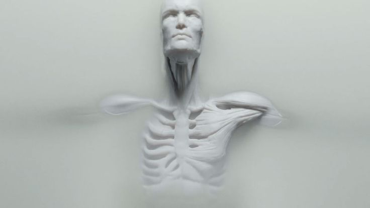 westworld human 3d-printing