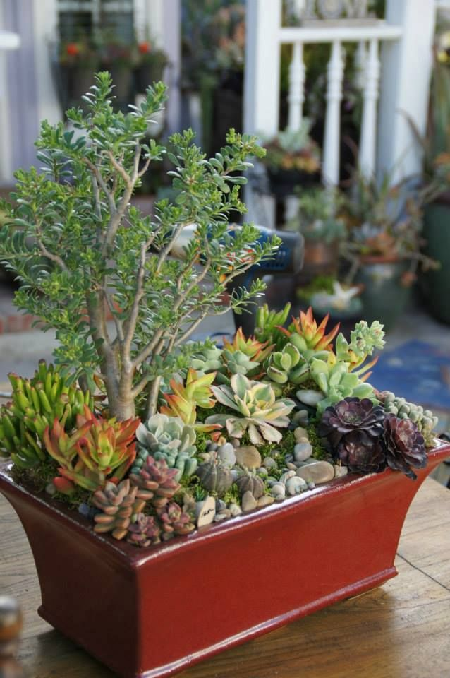44 Best Small Arrangements Images On Pinterest Container