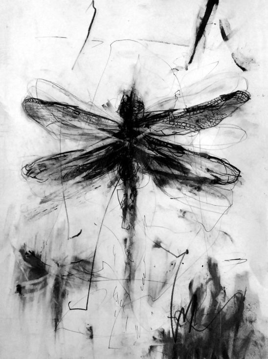 ARTFINDER: dragonfly 5 by Danuta Tojka - drawing 21 x 29cm