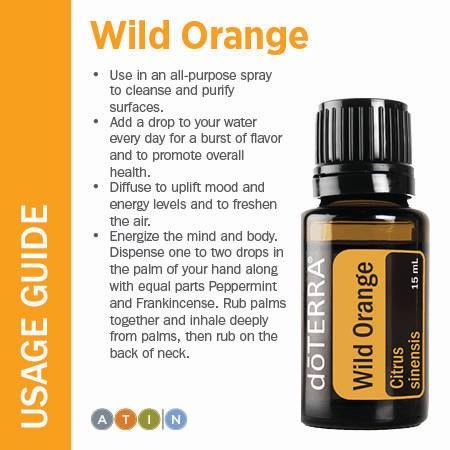 Cold-pressed from the orange peel, Wild Orange is excellent for energizing and revitalizing. It is commonly used as an effective tool for uplifting mood, as well as for its wonderful citrusy aroma.