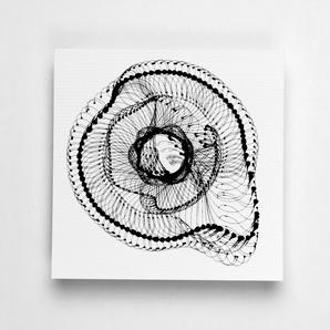 Tania Alvarez Zaldivar, moda barcelona  identity for fashion festival  Identity for a Fashion festival in Paris that would represent Catalan designers.    Process illustrations achieved by programming the movement of a module's rotation through interpolation and trigonometry using Java for Illustrator.